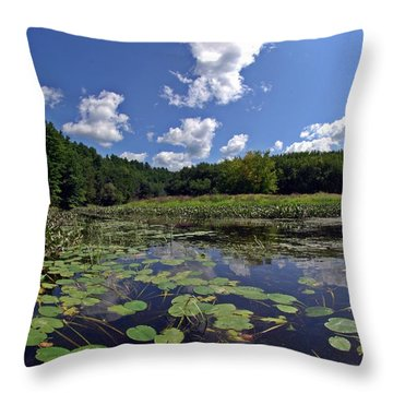 Sunny Day On The Merrimack Throw Pillow