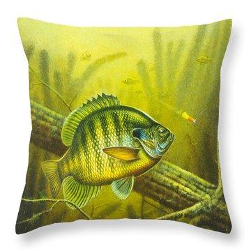 Sunny Day Panfish Throw Pillow by Jon Q Wright
