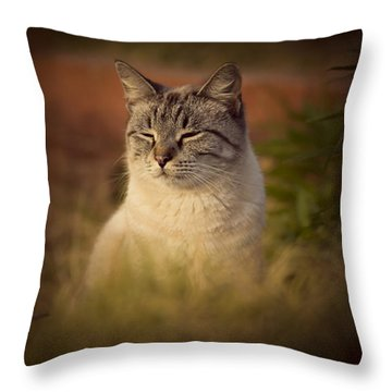 Sunny Days Like These Throw Pillow