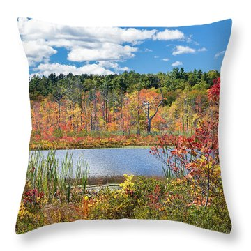 Sunny Fall Day Throw Pillow by Bill Wakeley