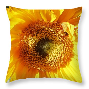 Sunny Flower Parts 2 Throw Pillow