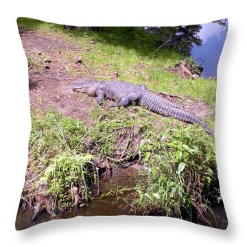 Sunny Gator  Throw Pillow by Joseph Baril