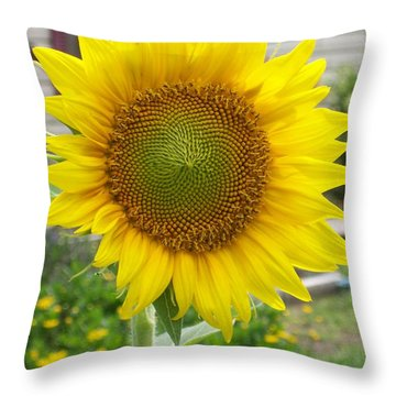 Bright Sunflower Happiness Throw Pillow by Belinda Lee