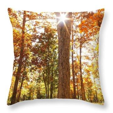 Sunny Hardwoods Throw Pillow
