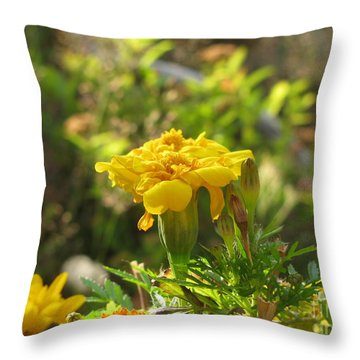 Sunny Marigold Throw Pillow by Leone Lund