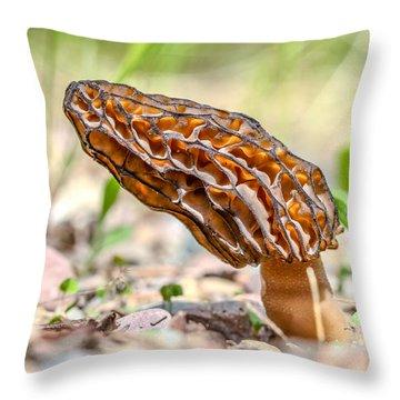 Sunny Morel Throw Pillow