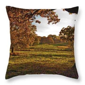 Sunny Richmond Autumn Throw Pillow by Maj Seda