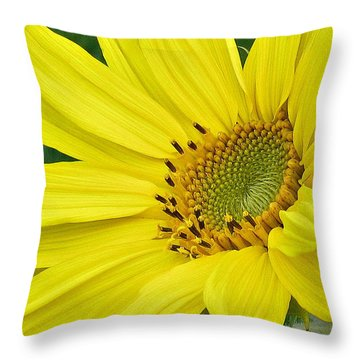Throw Pillow featuring the photograph Sunny Side Up by Janice Westerberg