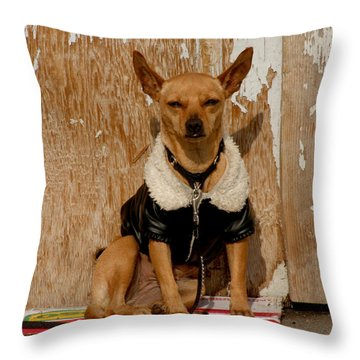 Sunny Spot. Throw Pillow by Art Block Collections