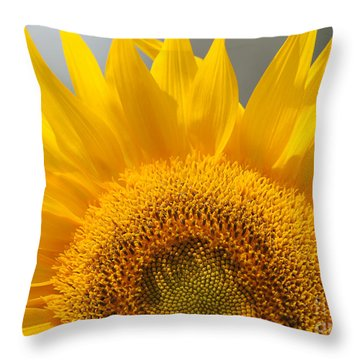 Throw Pillow featuring the photograph Sunny Sunflower by Olivia Hardwicke