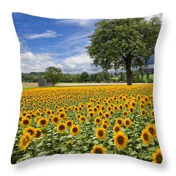 Sunny Sunflowers Throw Pillow by Debra and Dave Vanderlaan