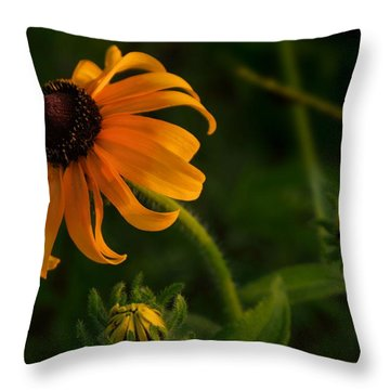 Throw Pillow featuring the photograph Sunny Trio by Laura Ragland