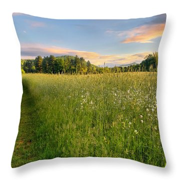 Sunny Valley Sunrise Throw Pillow