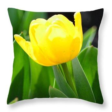 Sunny Yellow Tulip Throw Pillow by Maria Urso
