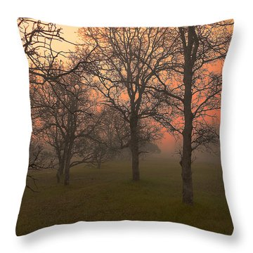 Fog And Sunrise 2 Throw Pillow by John Norman Stewart