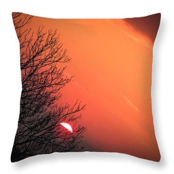 Sunrise And Hibernating Tree Throw Pillow