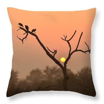 Sunrise At Bharatpur Throw Pillow by Fotosas Photography