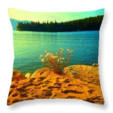 Sunrise At Daisy Lake Throw Pillow by Ann Johndro-Collins
