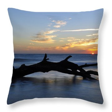 Sunrise At Driftwood Beach 7.2 Throw Pillow