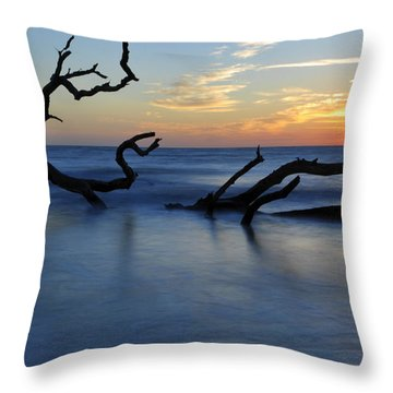 Sunrise At Driftwood Beach 7.3 Throw Pillow by Bruce Gourley