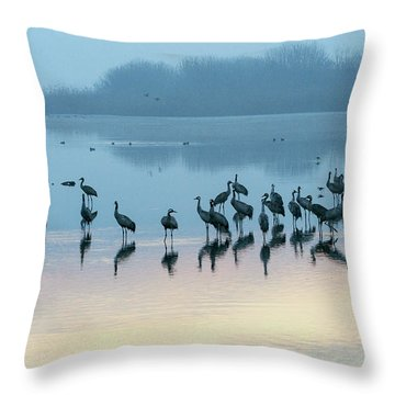 Sunrise Over The Hula Valley Israel 5 Throw Pillow