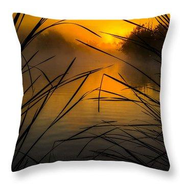 Sunrise At The Sepulveda Dam Wildlife Reserve Throw Pillow by Joe Doherty