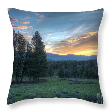 Sunrise Behind Pine Trees In Yellowstone Throw Pillow