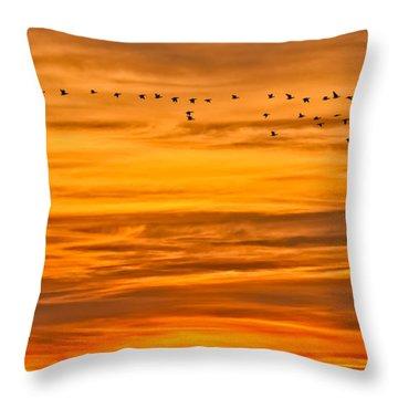 Sunrise Flight Throw Pillow