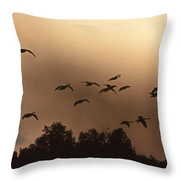 Sunrise Fog And Incoming Throw Pillow by Skip Willits