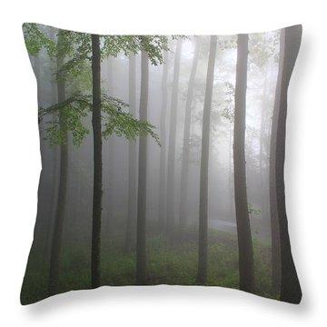 Sunrise Fog Throw Pillow by Melissa Petrey