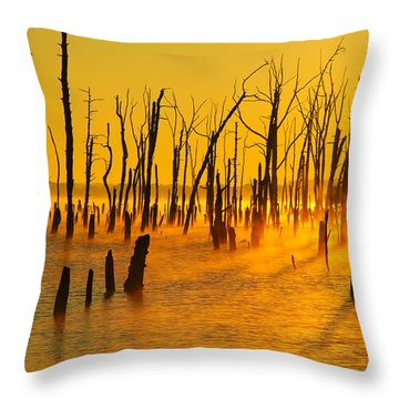 Sunrise Fog Shadows Throw Pillow