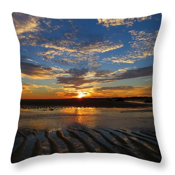 Sunrise Glory Throw Pillow by Dianne Cowen