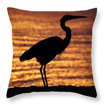 Throw Pillow featuring the photograph Sunrise Heron by Leticia Latocki