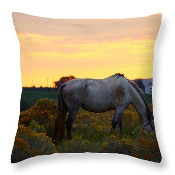 Throw Pillow featuring the photograph Sunrise Horse by Lynn Hopwood