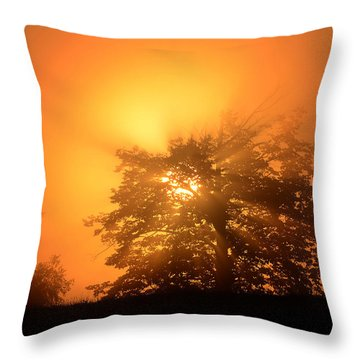 Sunrise In Fog Throw Pillow