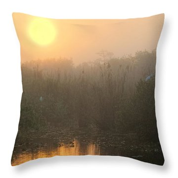 Sunrise In The Everglades Throw Pillow by Rudy Umans