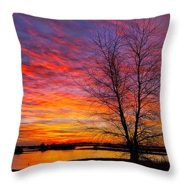Sunrise In The Sacramento Valley Throw Pillow