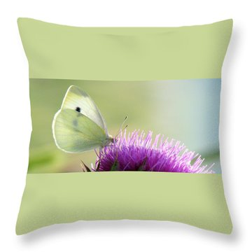 Sunrise In The Thistle Fields Throw Pillow