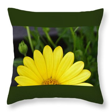 Throw Pillow featuring the photograph Sunrise by Larry Bishop