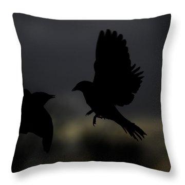 Sunrise Marauder Throw Pillow by Mark Alder