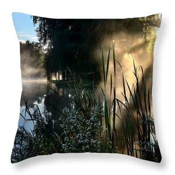 Sunrise Mist At A Marsh Throw Pillow