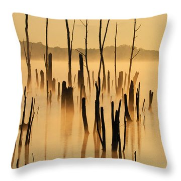 Sunrise Mist Throw Pillow