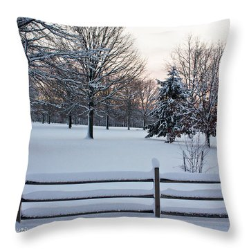 Throw Pillow featuring the photograph Sunrise On A Snowy Morning by Ann Murphy