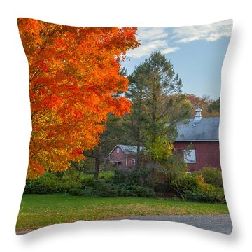 Sunrise On The Farm Throw Pillow by Bill Wakeley