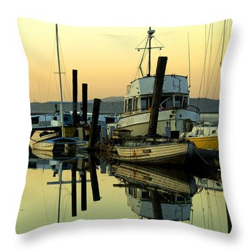 Sunrise On The Petaluma River Throw Pillow by Bill Gallagher