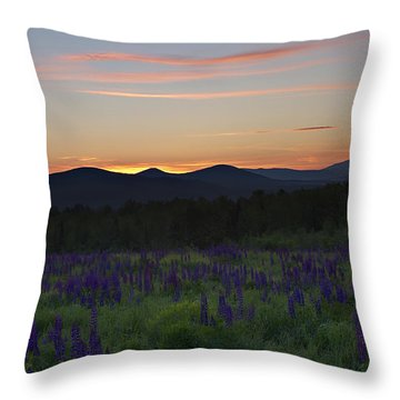 Sunrise Over A Field Of Lupines Throw Pillow