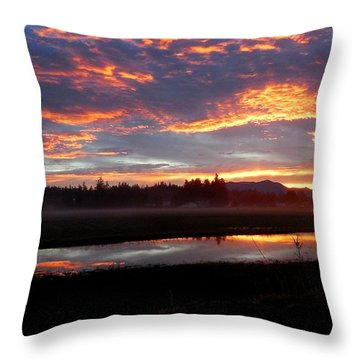 Sunrise Over Flooded Fields Throw Pillow