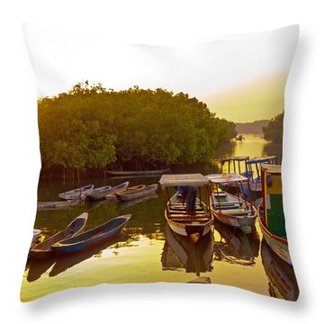 Sunrise Over Gambian Creek Throw Pillow
