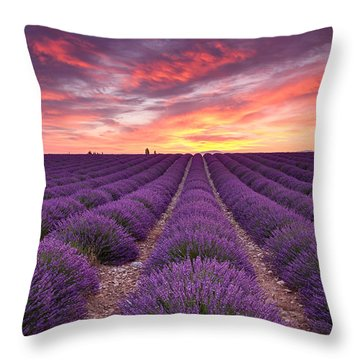 Sunrise Over Lavender Throw Pillow