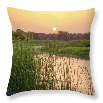 Sunrise Over The Marsh Throw Pillow
